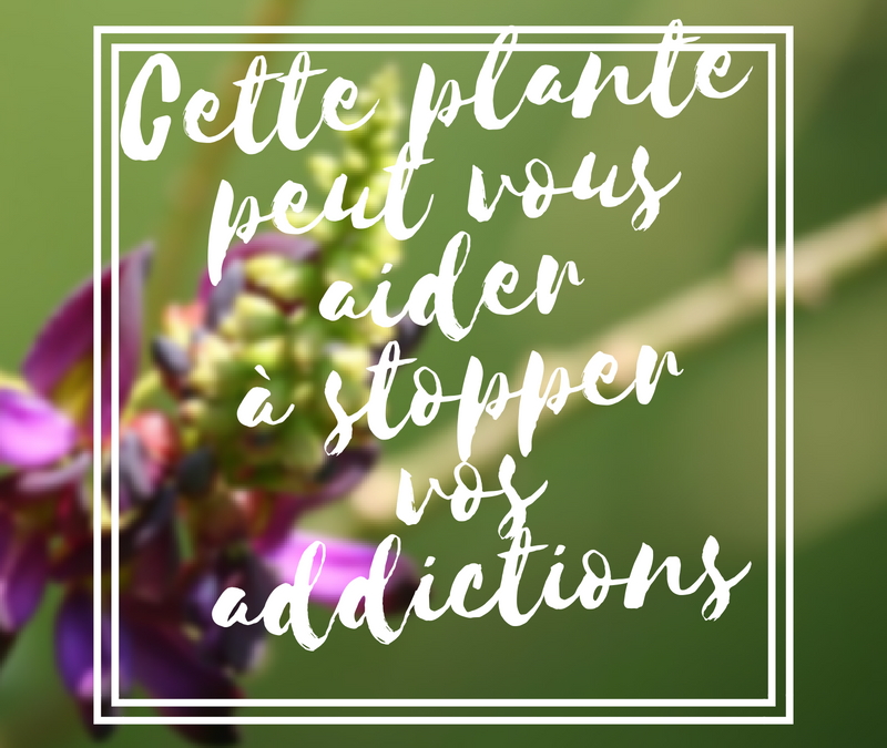 Cette plante peut vous aider à stopper vos addictions