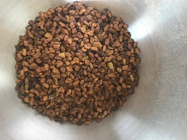 Fenugrec graines bio