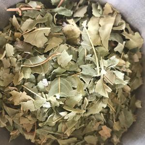Frêne feuilles bio