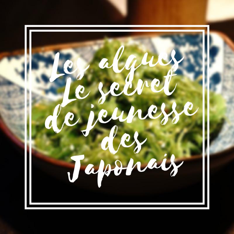 Les algues le secret de jeunesse des Japonais
