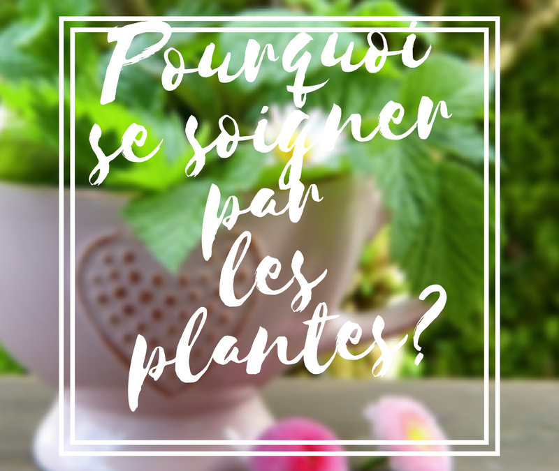 Pourquoi se soigner par les plantes ?