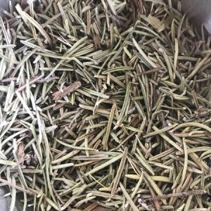 Romarin feuilles bio