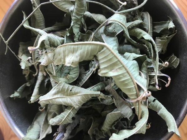 Verveine odorante feuilles Bio