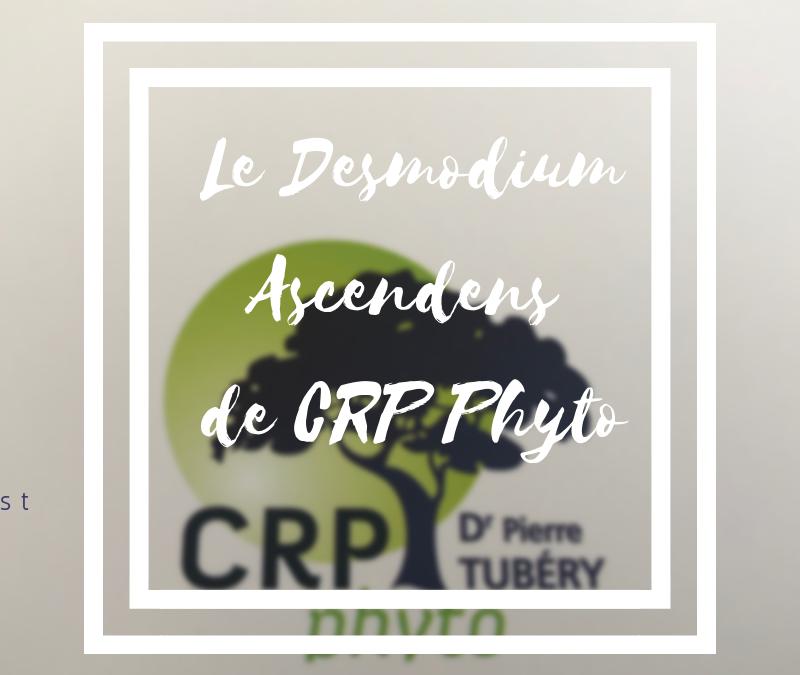 Le Desmodium Ascendens de CRP Phyto