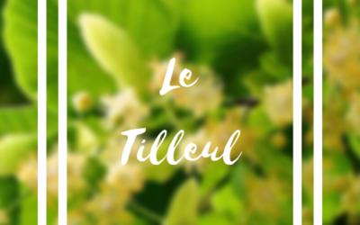 Tilleul