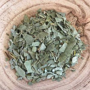 Eucalyptus feuille coupée bio